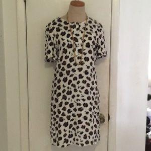 Amazing leopard Zara dress sz xs